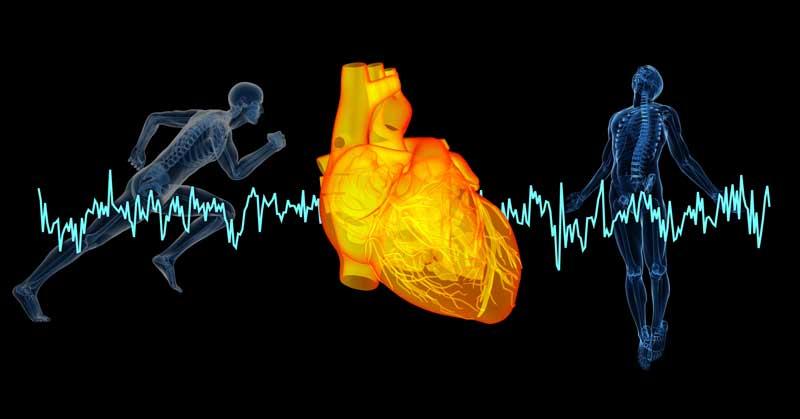 Jokaisen sydän on uniikki ja myös sen rasitteen sietokyky.